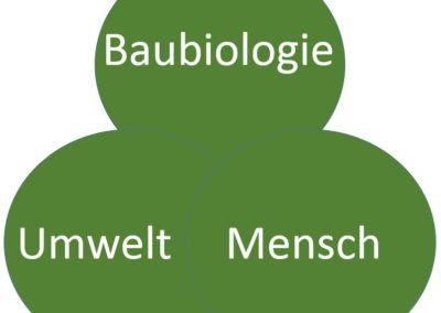 baubio